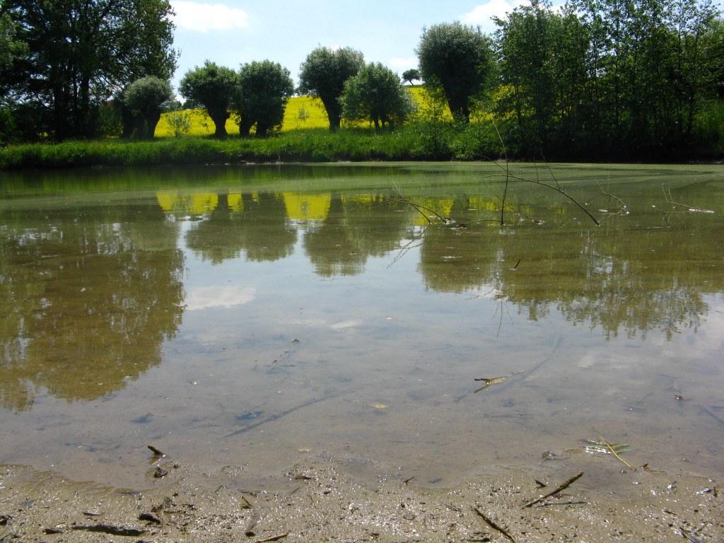 Blazice - vodní plochy